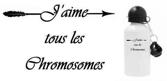 Gourde Chromosomes